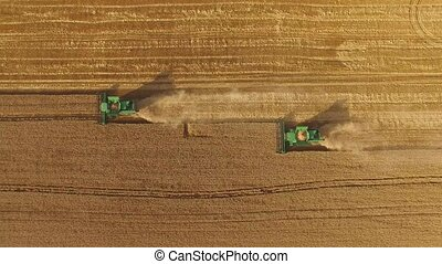 Combines on yellow field. Aerial view of green harvesters....