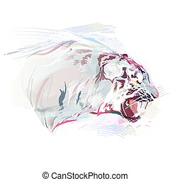 White Tiger, Watercolor Illustration - White tiger on a...