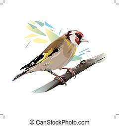 Goldfinch Bird, Vector Illustration - Goldfinch on a branch,...