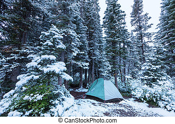 Tent in winter forest - tent in snowy forest