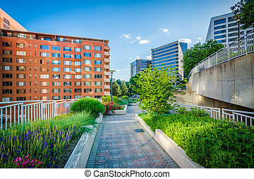 Gardens along a walkway at Freedom Park and modern buildings...
