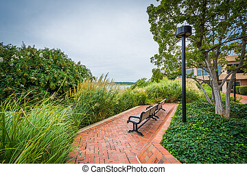 Walkway and benches in Alexandria, Virginia.