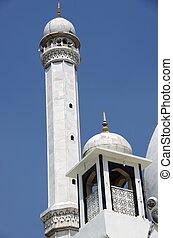 Mosque in Srinagar in Kashmir - Beautiful mosque in a...