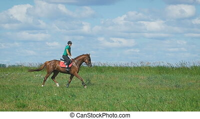 Beautiful girl riding a horse in countryside Trot -...