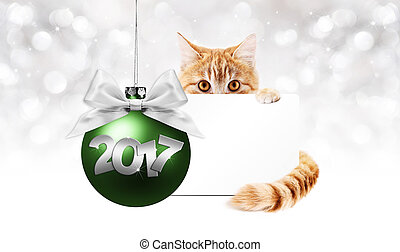 ginger cat and gift card with green christmas ball and...