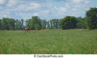Beautiful girl riding a horse in countryside. Gallop. The...