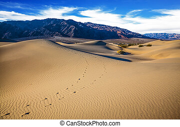 Hot autumn in Death Valley, California. The windy morning in...