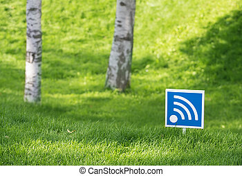 wi - fi outdoors in wood - wireless network of data transfer...