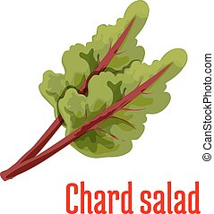 Chard salad vegetable plant icon - Chard salad plant icon...
