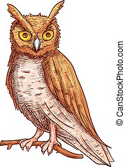 Night owl sketch icon - Night owl with big yellow eyes...