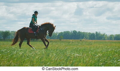 Beautiful girl riding a horse in countryside. - Beautiful...