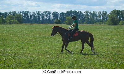 Beautiful girl riding a horse in countryside. Trot