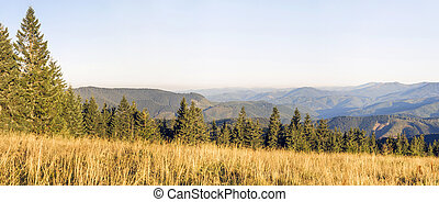 Panorama of morning sunrise in mountains and sunlit meadow