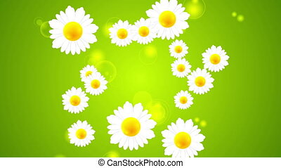 Green summer video animation with camomiles - Green summer...