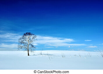 Winter landscape with tree and volcano - Winter landscape...