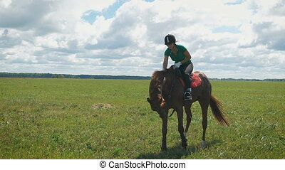 A young beautiful woman riding a horse at a field. Lady...