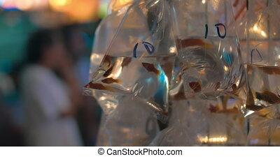 Goldfish in street market of Hong Kong