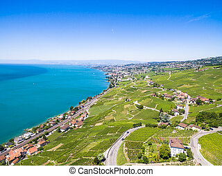 Aerial view of Vineyards in Lavaux region - Terrasses de...