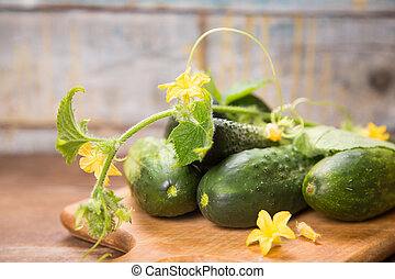 cucumber with flowers