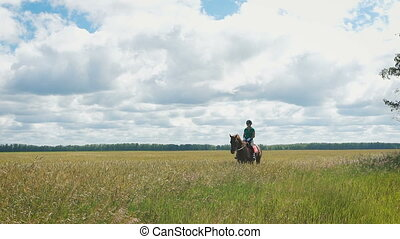 Beautiful girl riding a horse in countryside. A gorgeous...