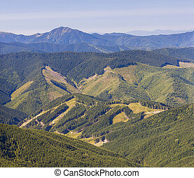 Panorama of Carpathian mountains in summer sunny day with...