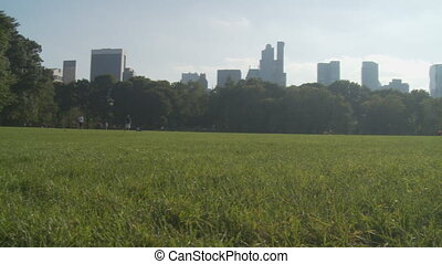 pan shot afternoon in central park - pan shot seap meadow on...