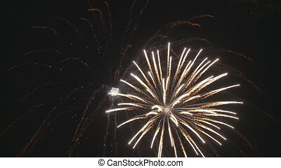 firework going with the wind - beautiful fireworks on dark...