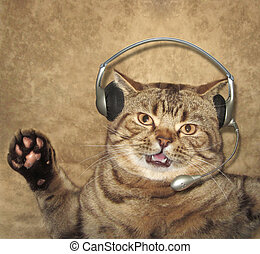 A cat is singing - A handsome cat is singing song. There is...