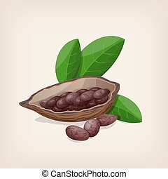Cacao pods and beans with leaves Vector illustration