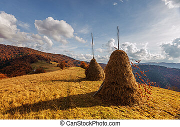haystack - Amazing rural scene on autumn valley Haystack on...