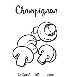 Set of champignon edible mushrooms sketch style vector...
