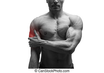 Man with pain in shoulder, ache in muscular male body,...
