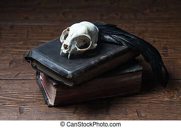 Vintage witchcraft still life - Cat skull, old books and...