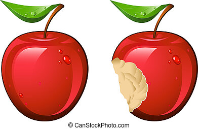 Apple - Juicy and ripe apple Vector illustration over white...