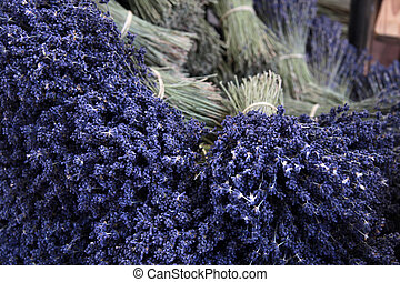 Bouquets of lavender on a market stall in Sault in the...