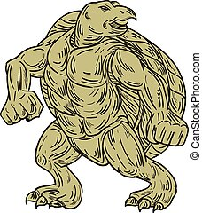 Ridley Sea Turtle Martial Arts Stance Drawing