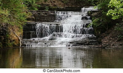 Old Mill Falls on Hector Creek Loop - Water splashes over...