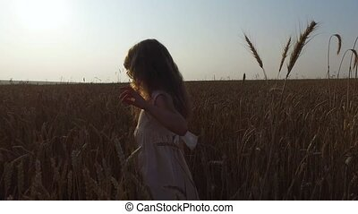 Little girl moves in wheat field. Wheat turned yellow. Soon...