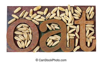 oat word and grain - oat word in vintage letterpress...
