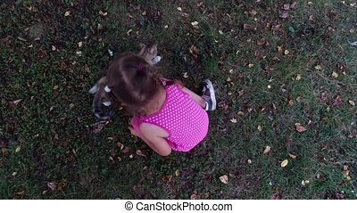 Girl child in glasses plays with a gray kitten in the yard. A little girl likes to play with the kitten.