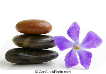 Smooth stones stacked next to small purple flower with dew...