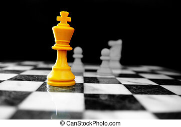 King and other chess pieces on the board