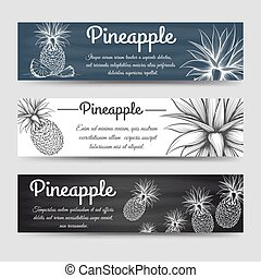Horizontal banners template with pineapple - Horizontal...