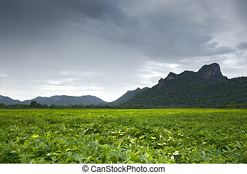 Khao Jeen Lae in cloudy day, big mountain at Thailand - Khao...