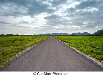 asphalt road between field in cloudy day, country side at...