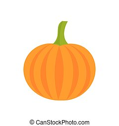 Pumpkin icon illustration - Pumpkin icon vector