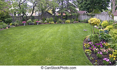 lawn - landscaped lawn