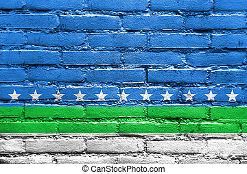 Flag of San Jose, Costa Rica, painted on brick wall