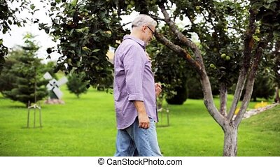 senior couple walking along summer garden - farming,...