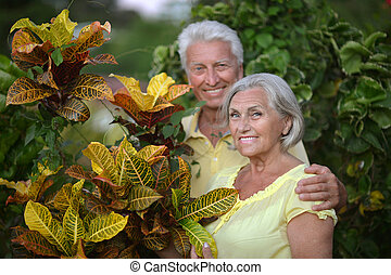 Elderly couple in tropical garden - Happy elderly couple in...
